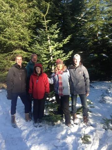 Christmas tree family 2015