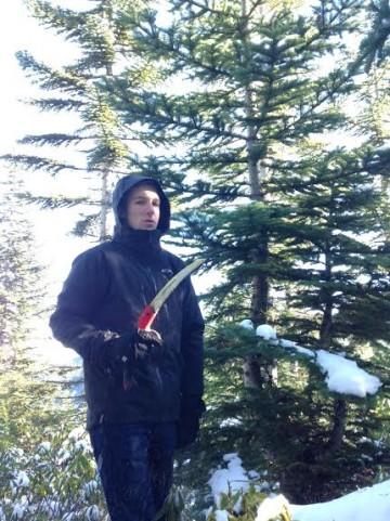 wes tree cut 2015